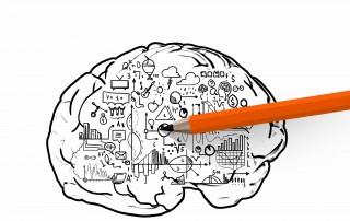 Denkpunkt - Naturgesetzte & Leadership